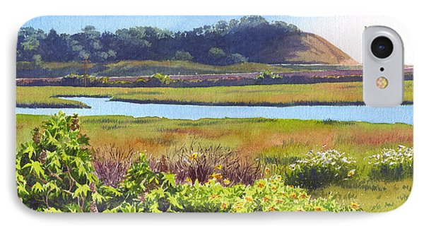 Los Penasquitos Creek Torrey Pines IPhone Case by Mary Helmreich