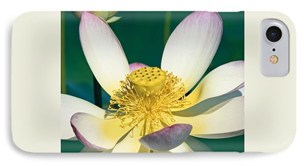 Lotus Blossom Phone Case by Heiko Koehrer-Wagner
