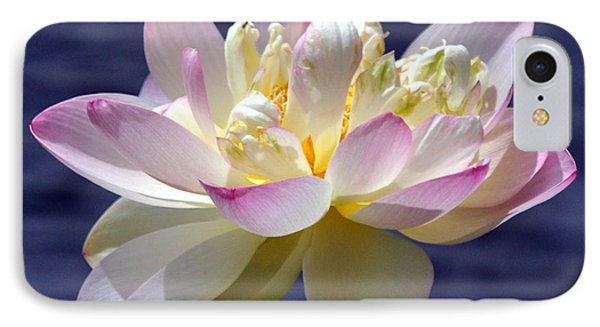 Lotus By The Lake Phone Case by Gail Butler