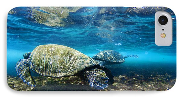Majestic Turtle IPhone Case by Sean Davey