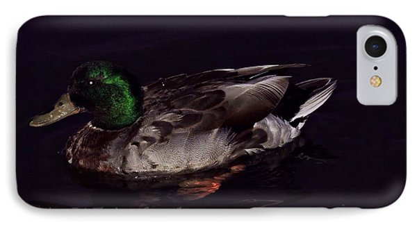 Mallard 2 Phone Case by Alicia Whiteford