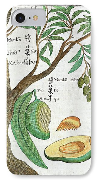 Mango Tree And Fruit IPhone Case by Natural History Museum, London