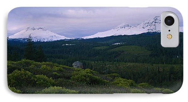 Manzanita Arctostaphylos Manzanita IPhone Case by Panoramic Images