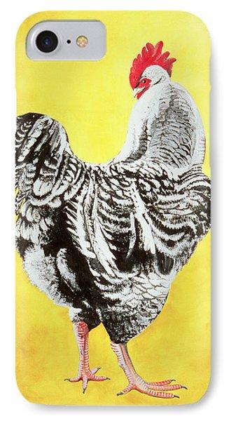 Maran Cockrel Phone Case by Jeanne Maze