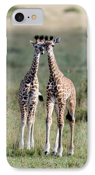 Masai Giraffes Giraffa Camelopardalis IPhone Case by Panoramic Images