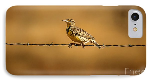 Meadowlark And Barbed Wire IPhone 7 Case by Robert Frederick