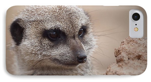 Meerkat 7 IPhone 7 Case by Ernie Echols