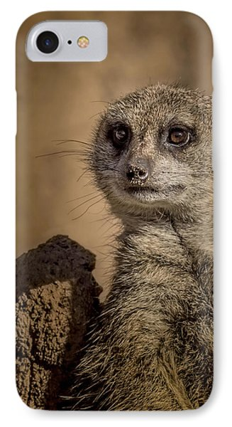 Meerkat IPhone 7 Case by Ernie Echols