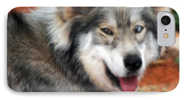 Miley The Husky With Blue And Brown Eyes - Fractilius IPhone Case by Doc Braham