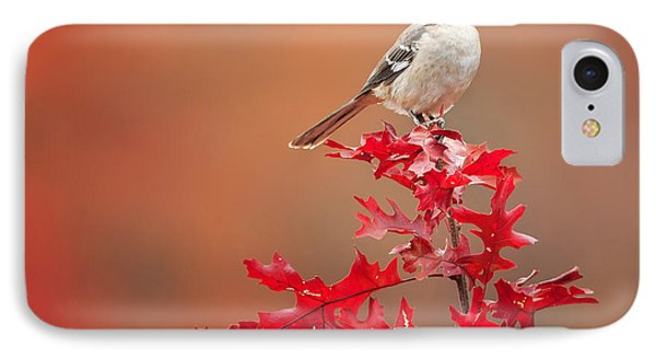 Mockingbird Autumn Square IPhone 7 Case by Bill Wakeley