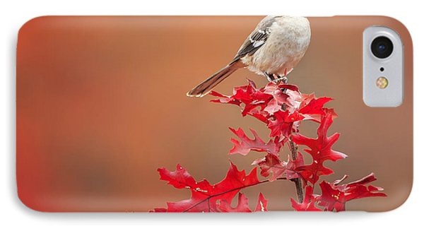 Mockingbird Autumn Square IPhone Case by Bill Wakeley