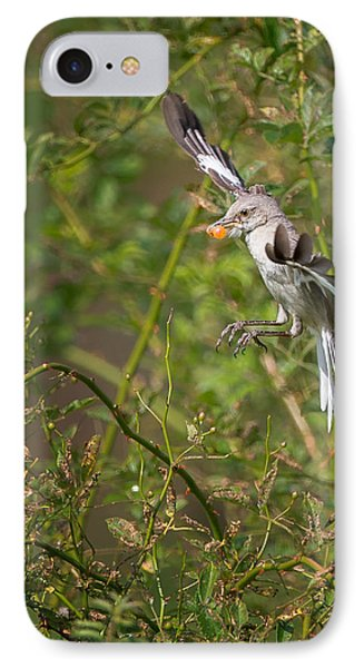 Mockingbird IPhone Case by Bill Wakeley