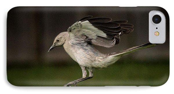 Mockingbird No. 2 IPhone Case by Rick Barnard