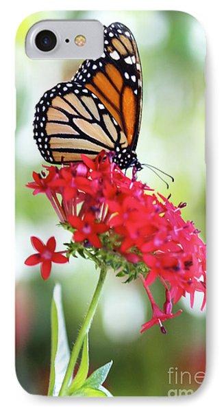Monarch V Phone Case by Pamela Gail Torres