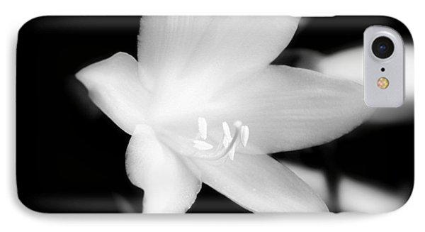 Moon Flower IPhone Case by Glenn Curtis
