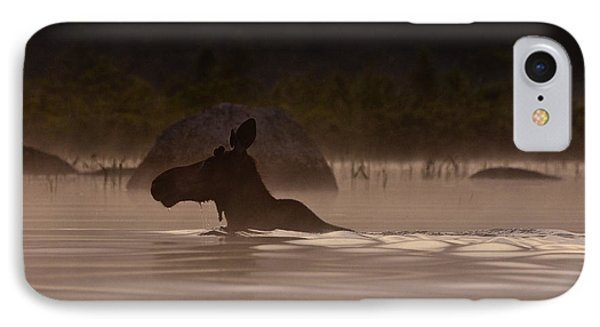 Moose Swim IPhone Case by Brent L Ander