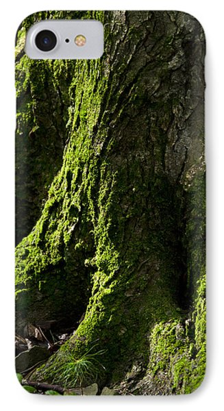 Moss Covered Tree Trunk Phone Case by Christina Rollo