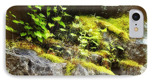Moss Rocks IPhone Case by Dan Carmichael