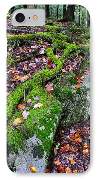 Moss Roots Rock And Fallen Leaves Phone Case by Thomas R Fletcher