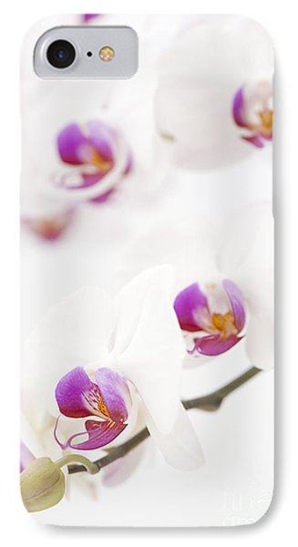 Moth Orchid Phone Case by Anne Gilbert
