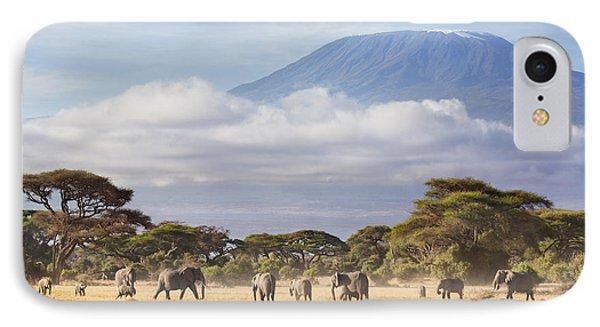 Mount Kilimanjaro Amboseli  IPhone Case by Richard Garvey-Williams
