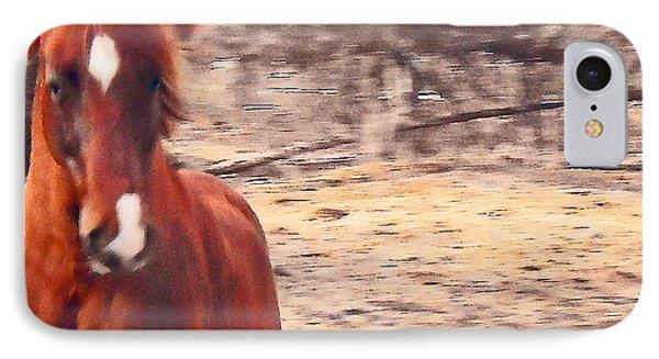 My Fine Friend The Flashy Chestnut Stallion Phone Case by Patricia Keller