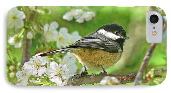 My Little Chickadee In The Cherry Tree Phone Case by Jennie Marie Schell