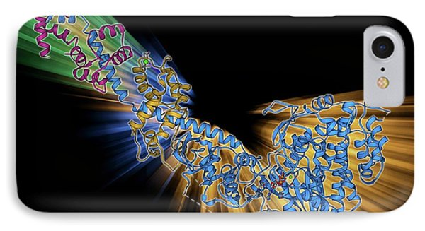 Myosin Fragment Molecule IPhone Case by Laguna Design