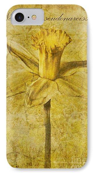 Narcissus Pseudonarcissus Phone Case by John Edwards
