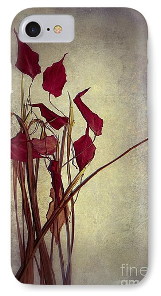 Nature Morte Du Moment  01 - Pr03 IPhone Case by Variance Collections