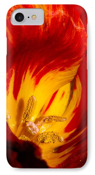Nature's Flame IPhone Case by Paula Ponath