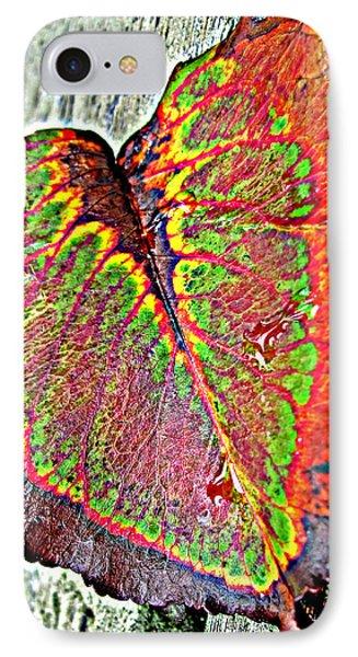 Nature's Glory Phone Case by Barbara McDevitt