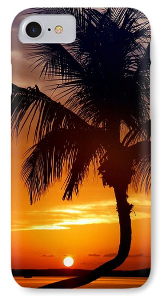 Night Of The Sun IPhone Case by Karen Wiles