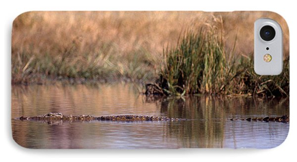 Nile Crocodile IPhone Case by Gregory G. Dimijian, M.D.