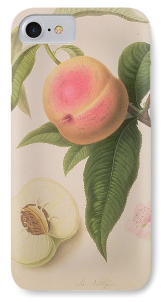 Noblesse Peach IPhone 7 Case by William Hooker
