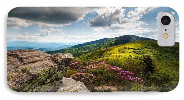 North Carolina Blue Ridge Mountains Roan Rhododendron Flowers Nc IPhone Case by Dave Allen