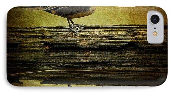 Northern Pintail Duck IPhone Case by Jordan Blackstone