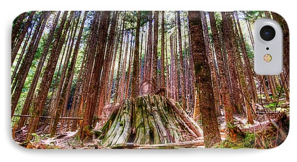 Northwest Old Growth Phone Case by Spencer McDonald