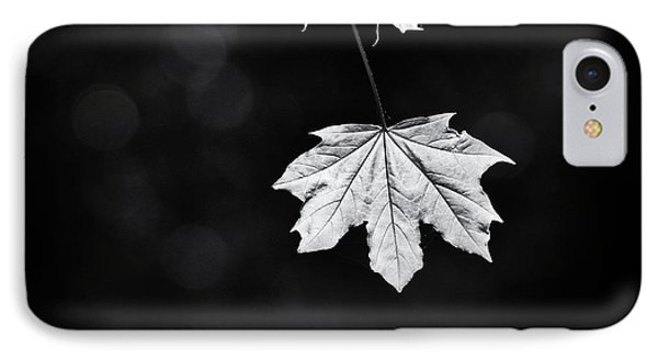 Norway Maple Leaf Monochrome IPhone Case by Tim Gainey