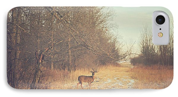 November Deer IPhone Case by Carrie Ann Grippo-Pike
