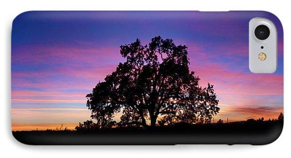Oak Reflections IPhone Case by Stan Angel