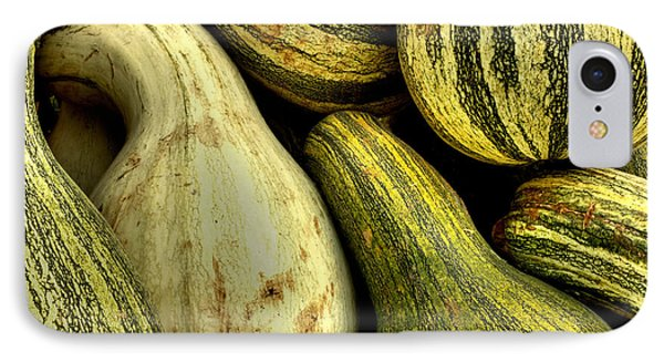October Gourds IPhone Case by Michael Eingle