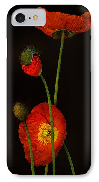 Odyssey IPhone Case by Toni Chanelle Paisley
