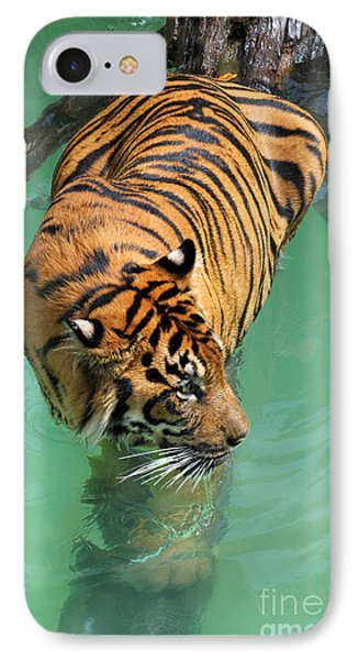 On The Water Phone Case by Dan Holm