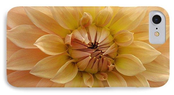 Orange Dahlia Closeup Phone Case by Matthias Hauser
