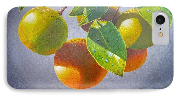 Oranges IPhone Case by Carey Chen