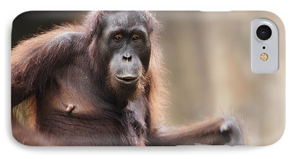 Orangutan IPhone 7 Case by Richard Garvey-Williams