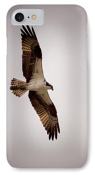 Osprey IPhone Case by Ernie Echols