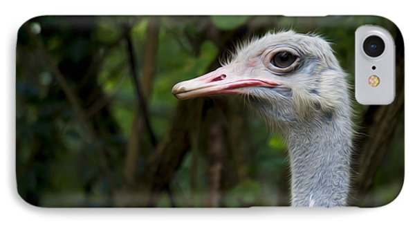 Ostrich Head IPhone Case by Aged Pixel