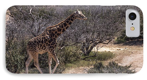 Out Of Africa Giraffe Phone Case by Janice Rae Pariza